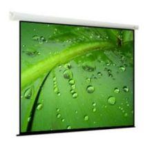 Экран с электроприводом ViewScreen Breston 406x305 см MW (4:3)
